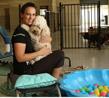 Playgroup for pooches keeps them stimulated